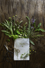 Fresh herb cuttings in white paper bag