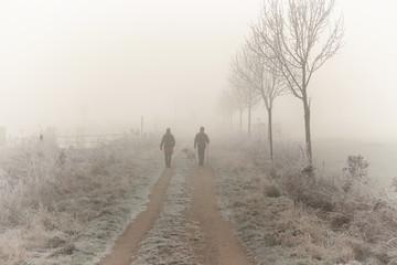 Winterspaziergang, im, Nebel, Wanderer, Spaziergänger, Elbe Lübeck Kanal