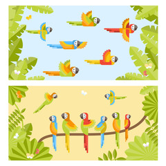 Two colorful background with flying parrots and sitting on branch parrots. Vector flat illustration.
