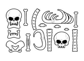 Mandible human isolated. Lower jaw. Anatomy of bone. Part of sku