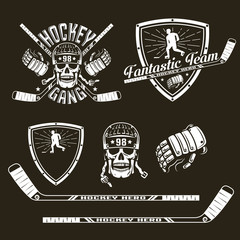 emblem hockey team