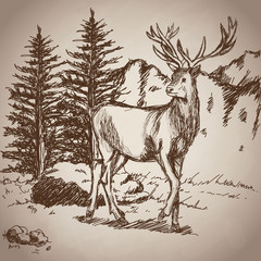 deer hand drawing landscape vintage vector illustration eps 10