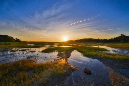 Wetlands Sunrise at Botany Bay Plantation