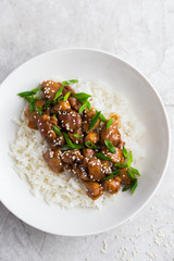 teriyaki chicken with rice, served with sesame seeds and chopped