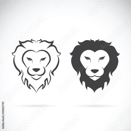 Vector of a lion head design on white background. Wild Animals.