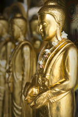 GOLDEN BUDDHA  IMAGES Golden Buddha images stand still quietly in a row.