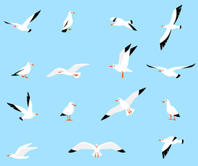 Vector set of beautiful seagulls.