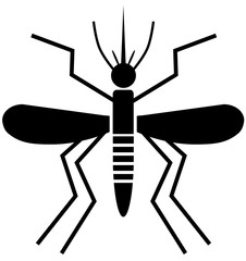 Mosquito in black vector image