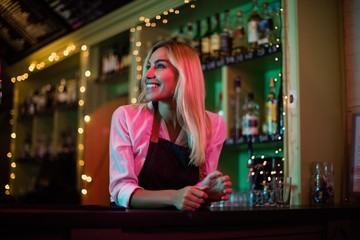 Beautiful waitress leaning at bar counter