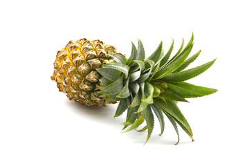 Isolated of pineapple fruit on white background