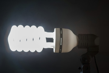 Energy-saving light bulbs lit