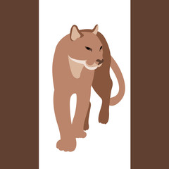 cougar vector illustration style Flat