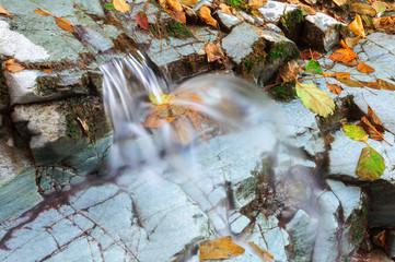 Torrente con cascata