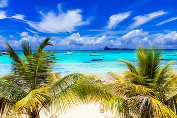 Tuinposter Eiland Tropical scenery - Cap Malhereux in Mauritius island