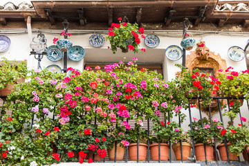 Traditional Andalusian balcony with flowers and ceramic plates (Spain)
