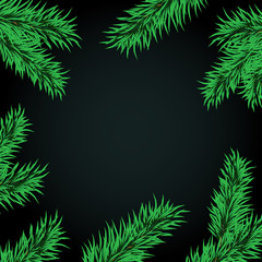 Fir tree branches frame dark large