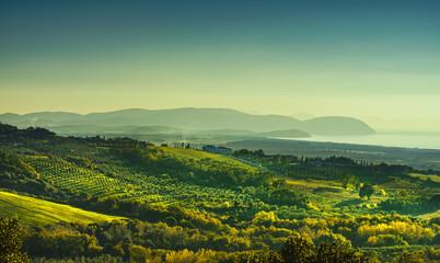 Maremma sunset panorama. Countryside, sea and Elba. Italy