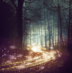 Foto op Aluminium Bossen Fantasy forest road with firefly lights. Magic colored woodland fairy tale. Dreamy foggy forest tree with winding road background.