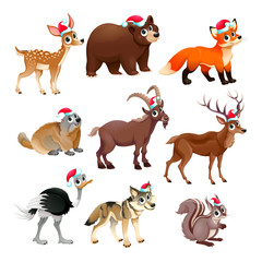Funny Christmas animals