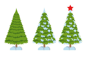 Merry Christmas tree sign on white background. Pine sign.