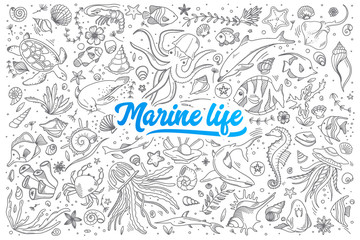 Hand drawn set of marine life doodles with blue lettering in vector