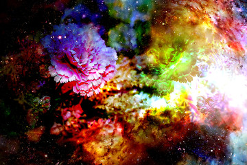 abstract multicolor flower motive collage in space. Carnation flower.