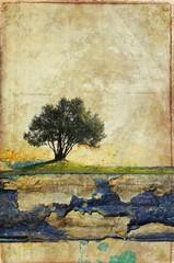 Grunge olive tree on damaged cardboard. Useful for background.