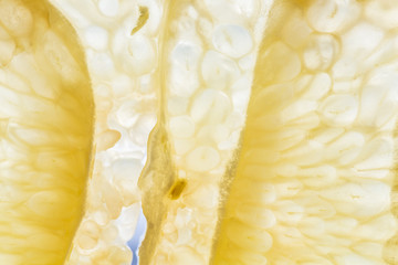 Abstract macro of a thin slice of a grapefruit Wall mural