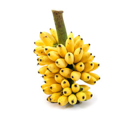 Banana bunch isolated on white background.Ripe bananas bunch iso