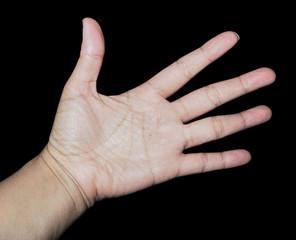 open hand left