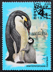 post stamp penguin emperor USSR 1978 Moscow Soviet Union blue background