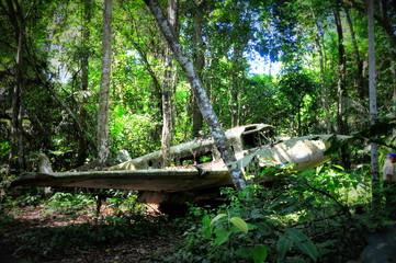 Crashed plane in jungle Amazon rain forest in Suriname