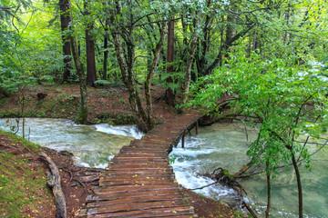 Plivitcka Lakes National Park. Croatia