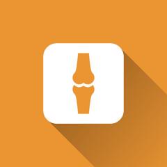 knee joint bone icon design