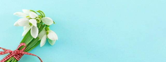 Snowdrops bouquet on soft background