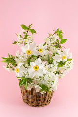 Narcissus flowers bouquet on pink background