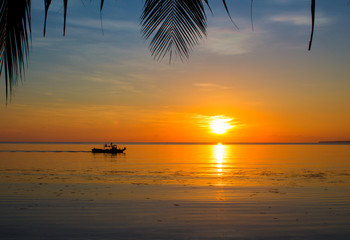 Seaside sunset with palm leaf silhouettes. Tropical sunset landscape with boat in water.