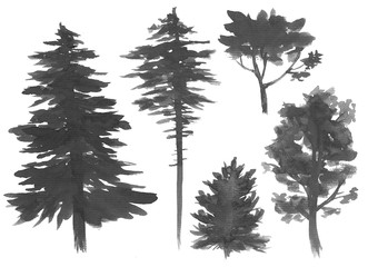 Silhouettes of trees, watercolor painting, isolated on white
