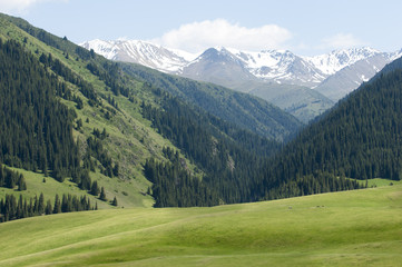 Tien Shan mountains. Assy plateau