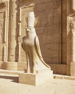 Statue of Horus, Temple of Horus, Edfu, Egypt