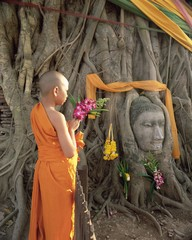 Novice monk with offering of flowers, and Buddha head in Wat Phra Mahathat, Ayuthaya (Ayutthaya) Historical Park, Ayuthaya (Ayutthaya), UNESCO World Heritage Site, central Thailand, Thailand, Southeast Asia, Asia