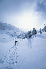 Rear view of skier walking through snow mountains