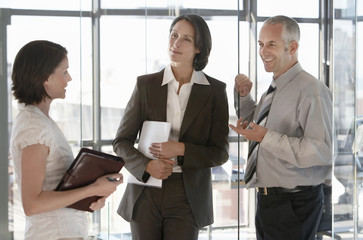 Three business people communicating in office