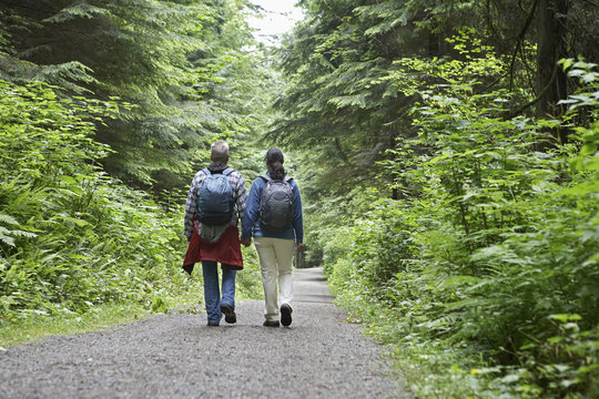 Full length rear view of a couple walking on forest road amid lush trees