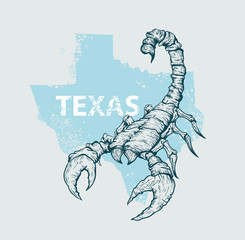 Scorpion on a background map of Texas