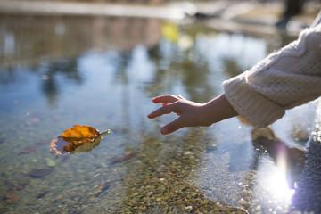 水面に浮いた落ち葉を拾う子供の手