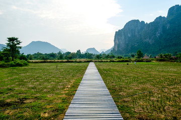 Drewniana ścieżka nad polami ryżowymi, Vang Vieng
