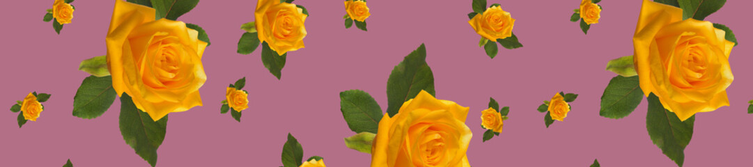 Wall Mural - banner pattern yellow rose
