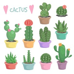 Cute vector cactus illustration. Very bright and colorful plants in pots with flowers and thorns. Decorative and exotic houseplant.