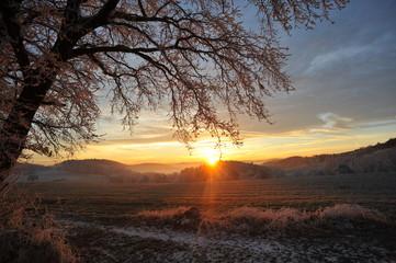 Wintermorgen im Odenwald bei Lautertal, Hessen, Deutschland